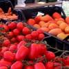 Siracusa, via libera della Giunta alla realizzazione di un mercato al coperto