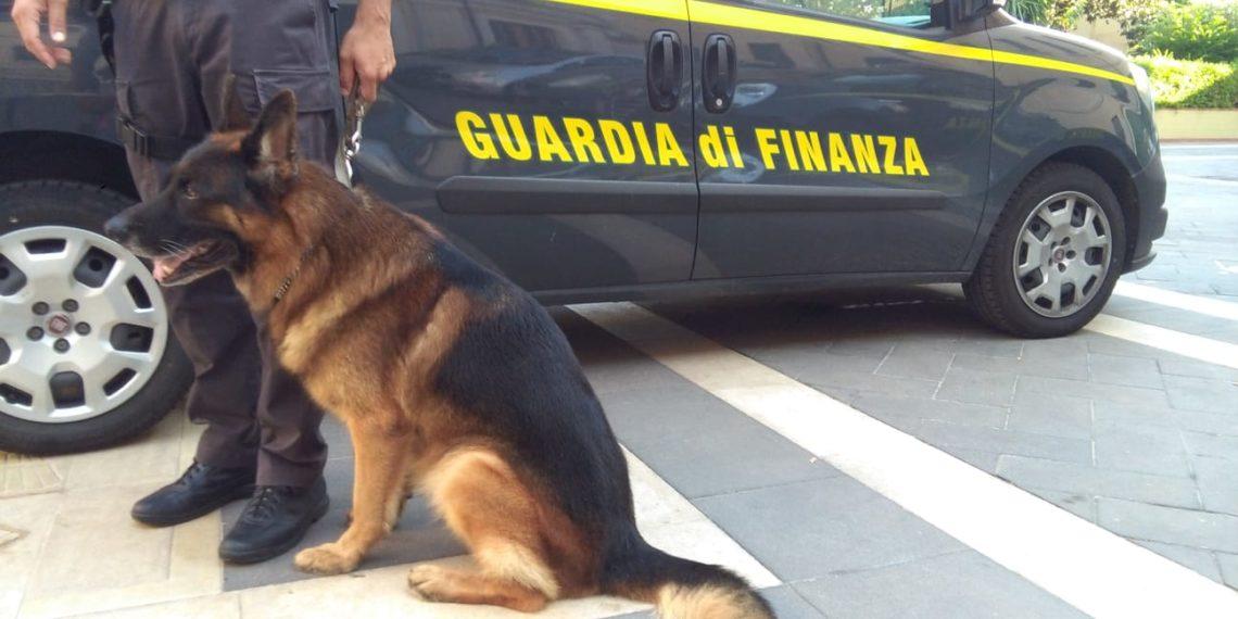 Siracusa, finanzieri con cane antidroga in azione, arrestato 1 pusher